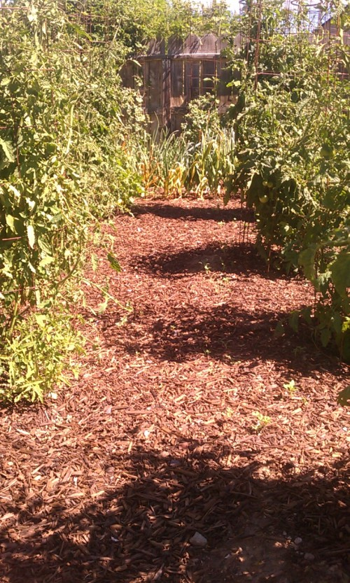 Fire resistant wood mulch cody witt real deal compost